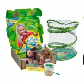 40% off Insect Lore Morphing Kits @ Amazon