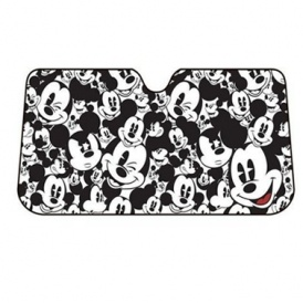 Disney Windowshield Covers Just $9.99 Each
