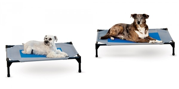 Coolin' Pet Cot Bed $5.37 @ Amazon