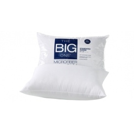 The Big One Pillows Just $2.54