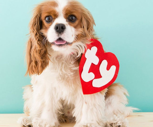 Dog Beanie Baby TY Tag Costume $19.99 @ Amazon