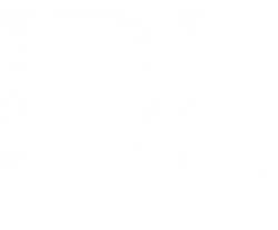 Designer Living logo